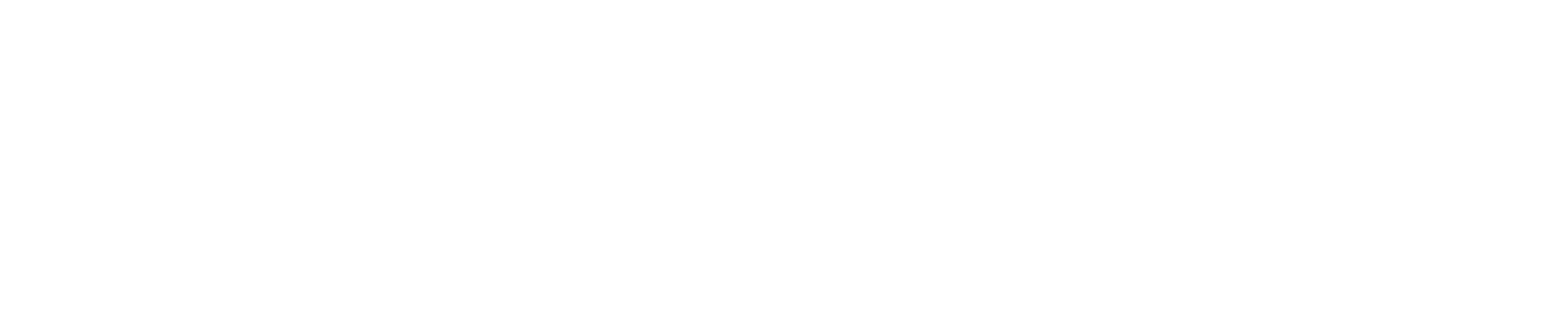 wilderness times logo