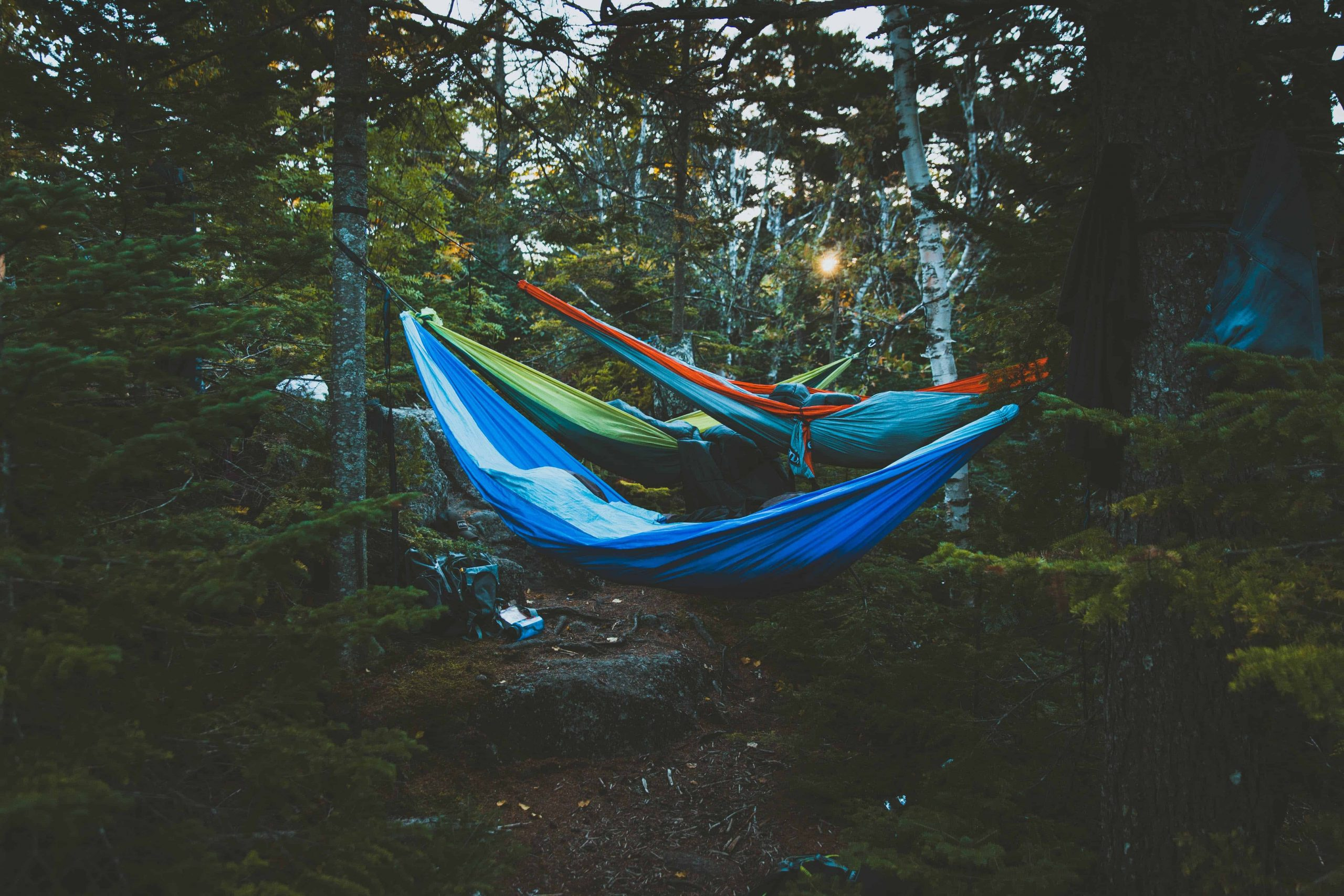 hammocks in a camp