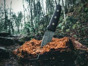 backpacking knife stuck in the wood