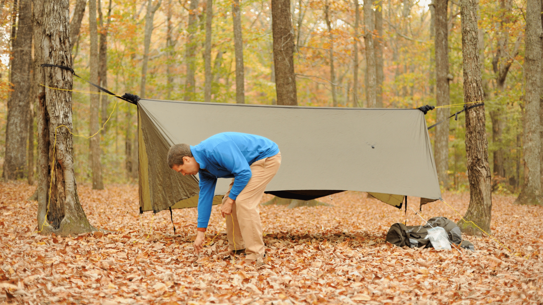 hammock tarp
