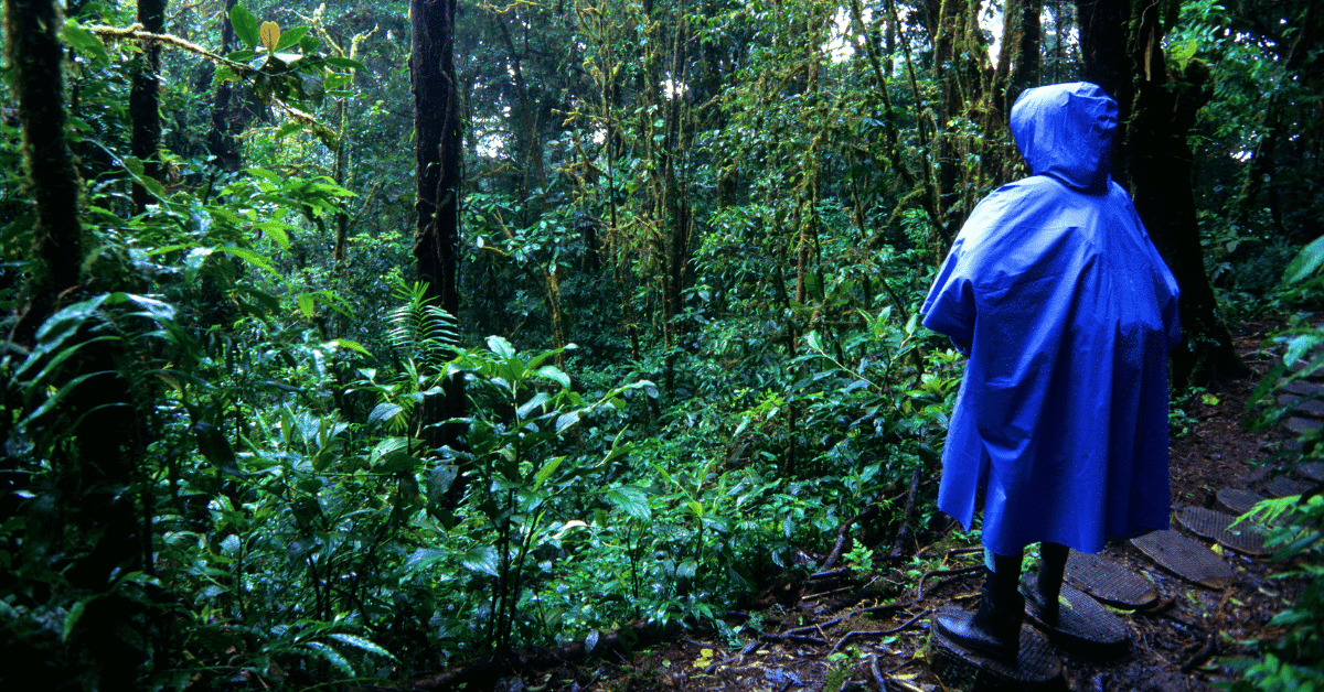a person wearing a rain poncho in the rainforest
