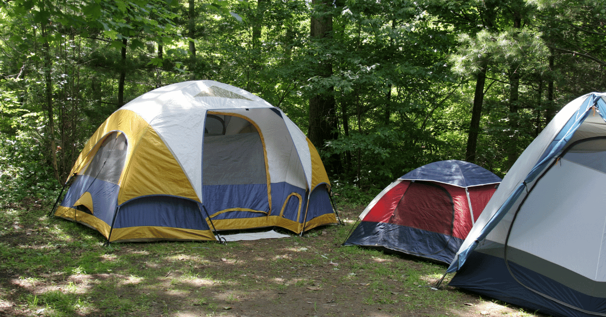 3 tents set up in a shady spot