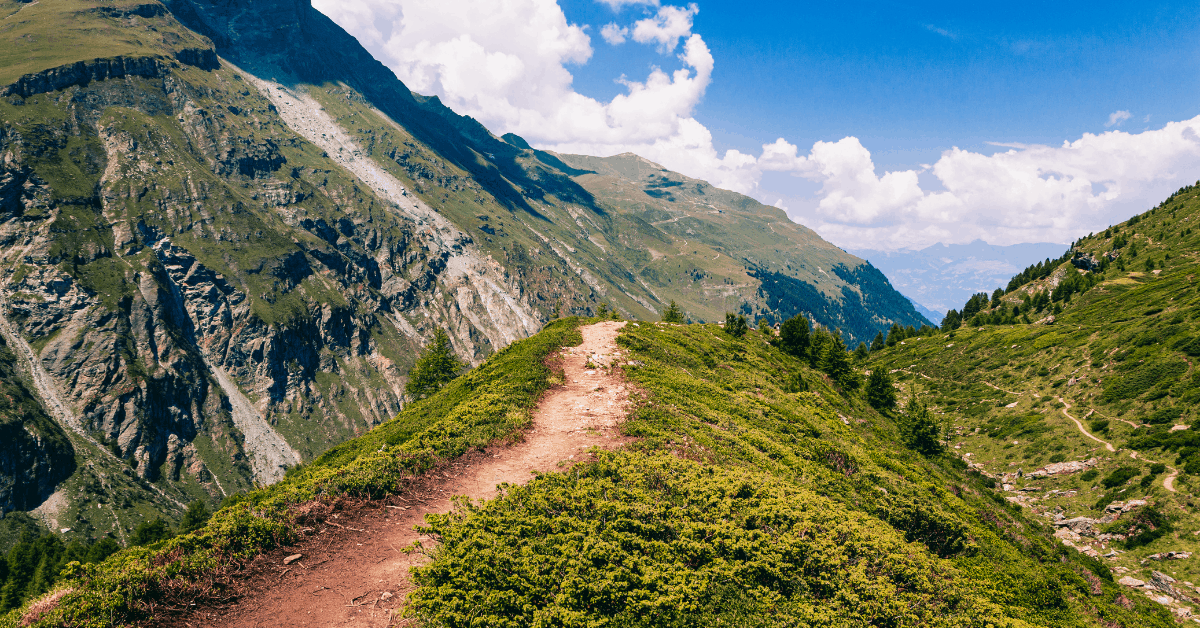 a hiking trail in the mountains