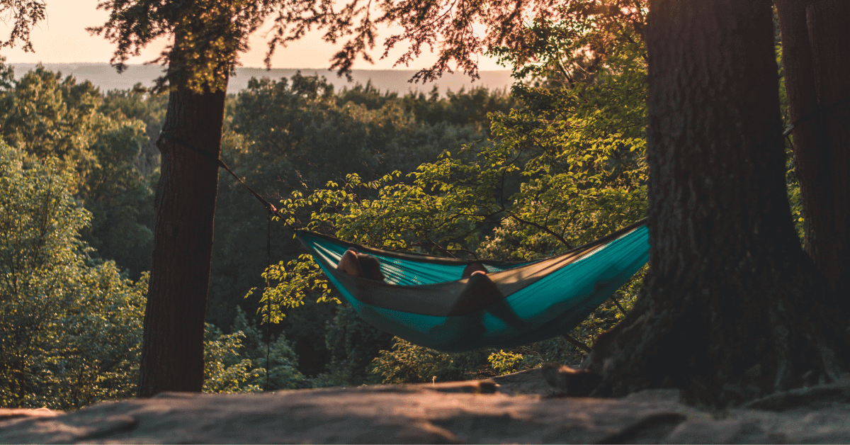 a person lounging in a hammock in nature