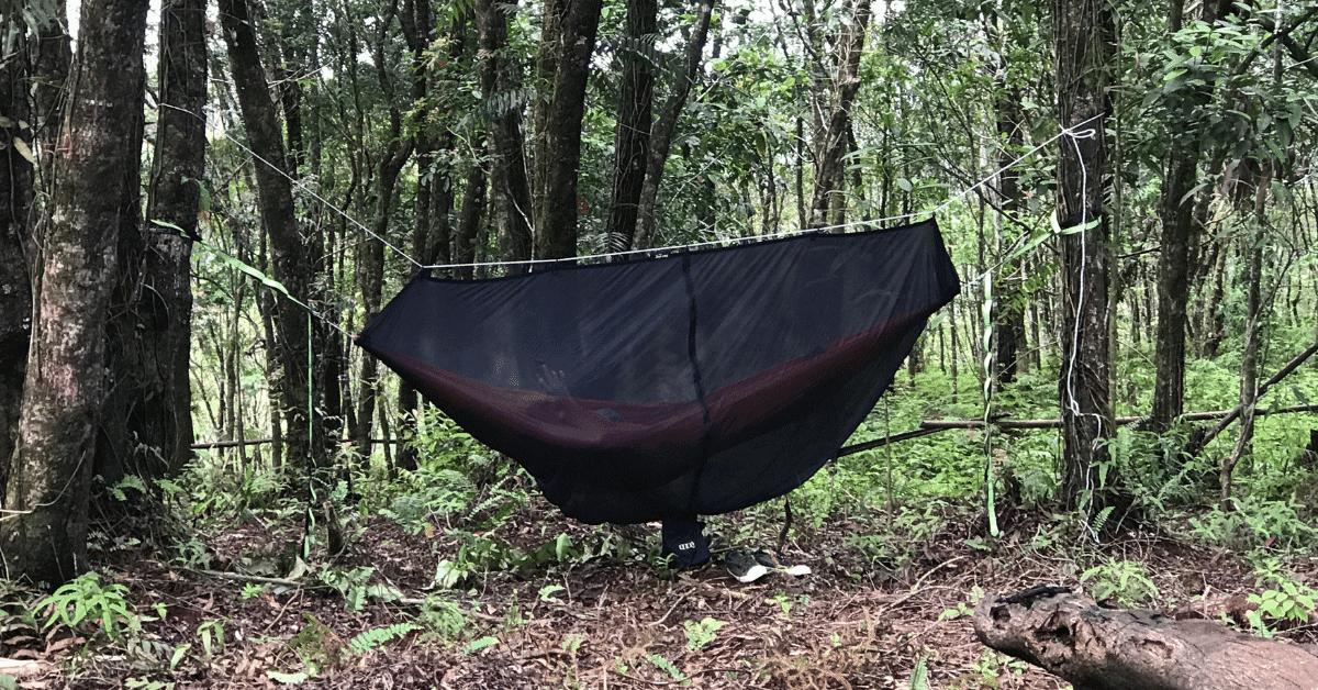hammock with a 360 degree bug net