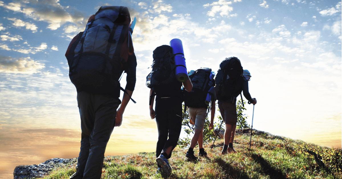hikers walking along a trail