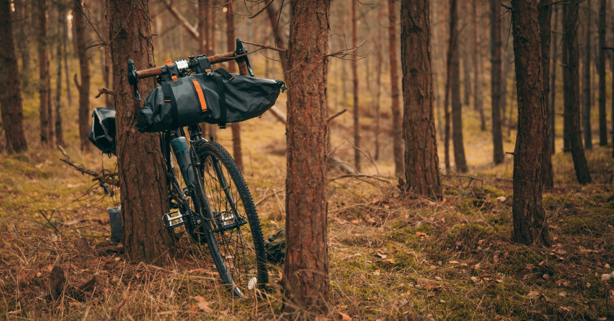 a bicycle in the woods with bags attached