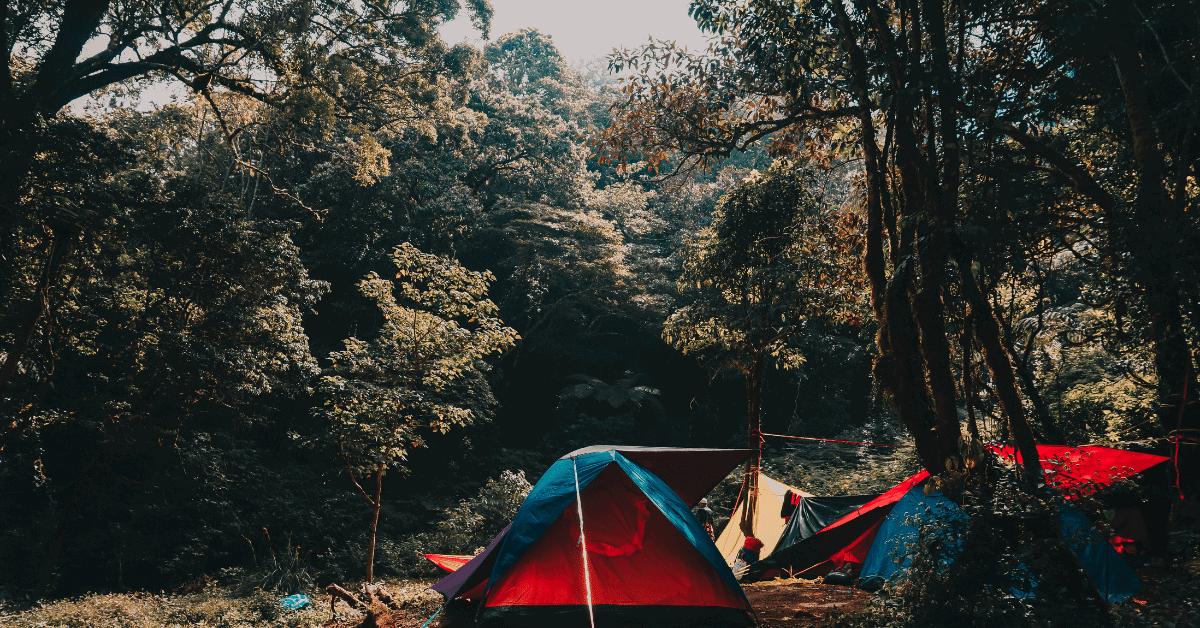 a campsite in the wilderness