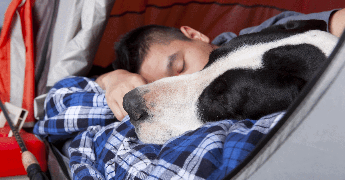 a man and his dog sleeping in a tent