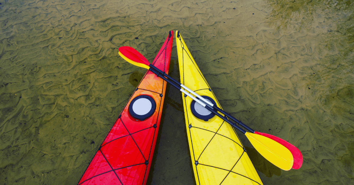 a red kayak and a yellow kayak in shallow water