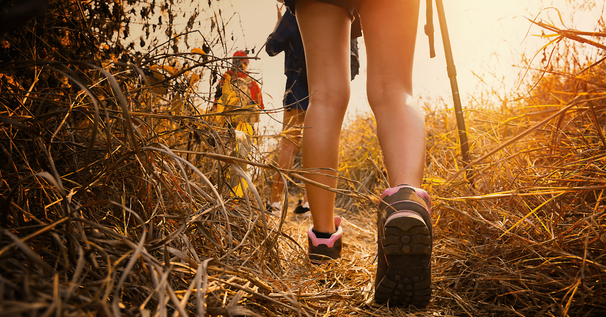 three hikers walking through a field
