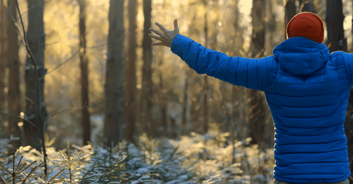 person wearing blue down jacket in the woods