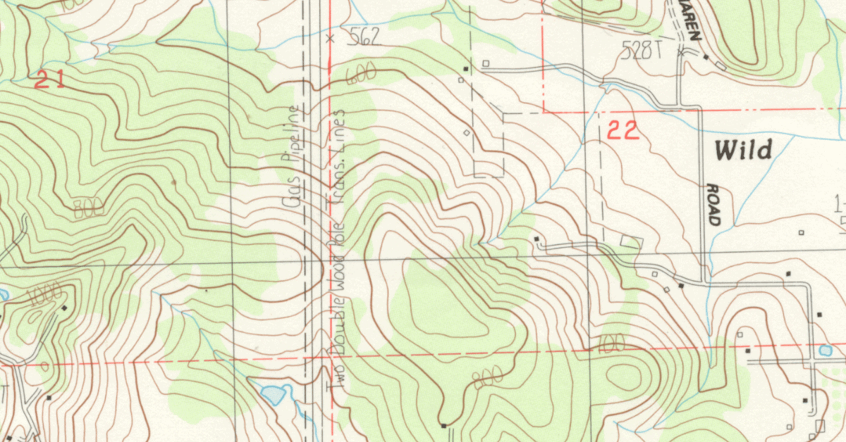 detail of a topographic map