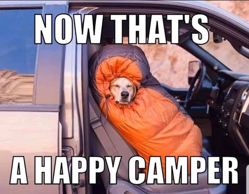 now thats a happy camper