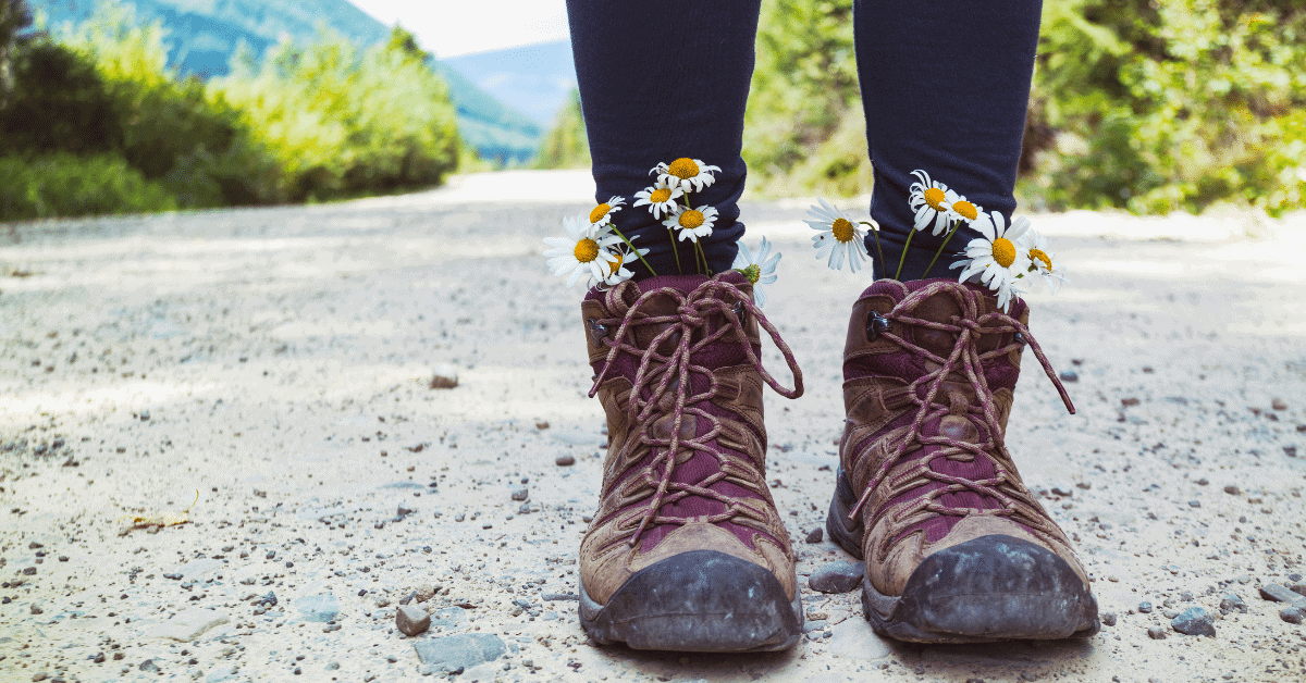 hiking boots with daisies sticking out from the top